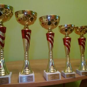 X Otwarte Mistrzostwa Radziłowa w Tenisie Stołowym